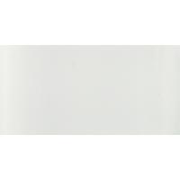 Bright White 600x300x8 Glossy