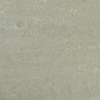 Ash Grey Polished 600x600 (minor defects)