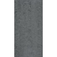 Steel Grey Polished (Commercial Grade) 600x300