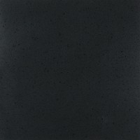 Porcelain Quartz Black Pearl Honed 296x296