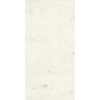Travertine White Honed 600x300